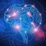Что такое двигательный интеллект и как он влияет на здоровье